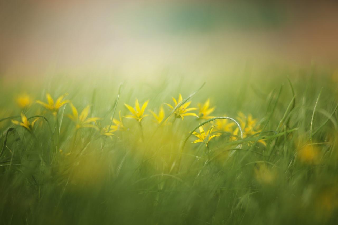 odliczając do wiosny