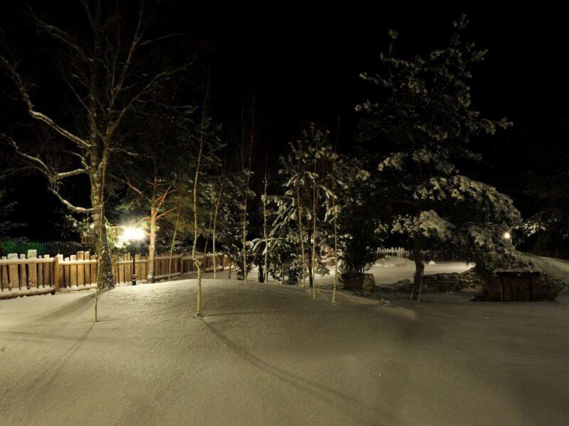 Nocna zima